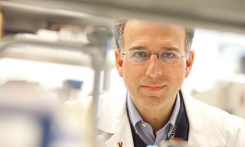 Dr.-Ivan-Borrello