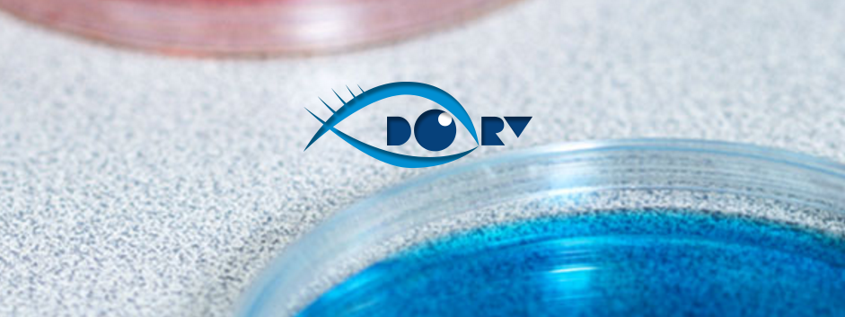 Clinical Trial Finder Dory